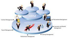 Phần mềm quản lý nhân sự HRM